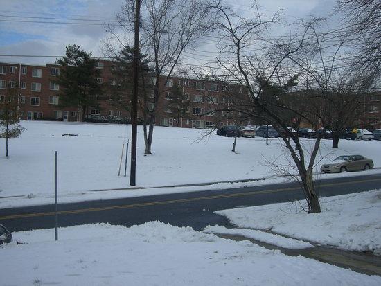Ein Bild vom Schnee vor unserer Haustür